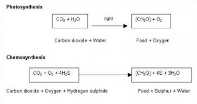 by products of chemosynthesis